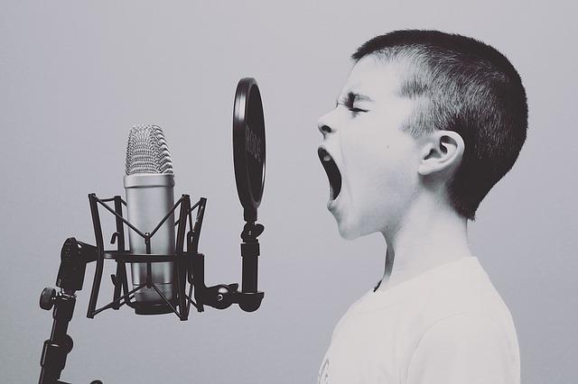 Gesang Vocalcoaching Wildau Freie Musik und Kulturakademie Freie Musikschule Wildau Unterricht