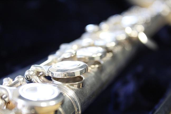 Flöte Unterricht Wildau Musikschule
