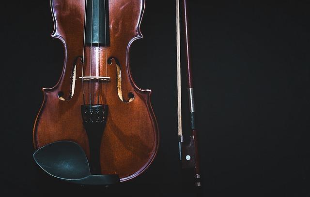 Violine Streichinstrumente Musikschule Wildau
